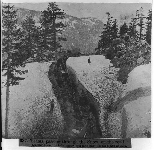 Teams passing through the snow, on the road leading down into Lake Valley from the summit of the Sierra Nevada