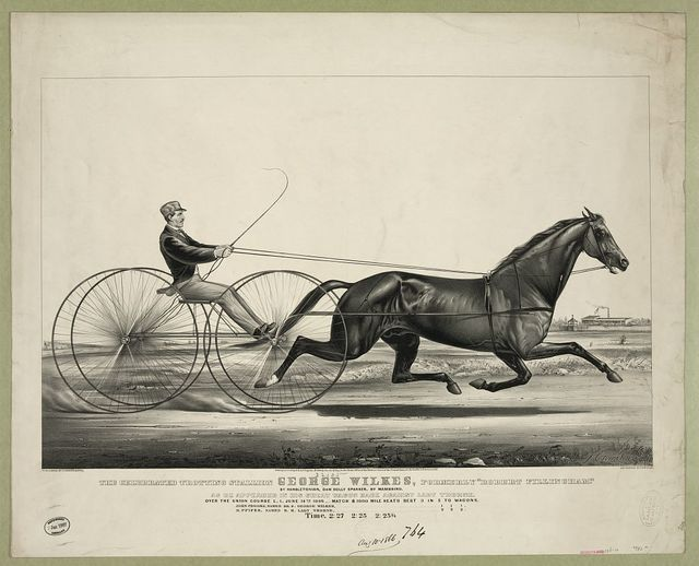"The celebrated trotting Stallion George Wilkes, formerly ""Robert Fillingham"": by Hambletonian, dam Dolly Spanker, by Mambrino. As he appeared in his great Wagon Race against Lady Thorne. Over the union course L.I. June 14th 1866,-match $1000 mile heats best 3 in 5 to Wagons"