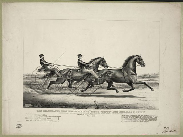 """The celebrated trotting Stallions """"Young Woful"""" and """"Abdallah Chief"""": On the last quarter of their great five mile race, in Harness. Over the Fashion Course, L.I. Nov. 4th 1865. Time: 13:53"""