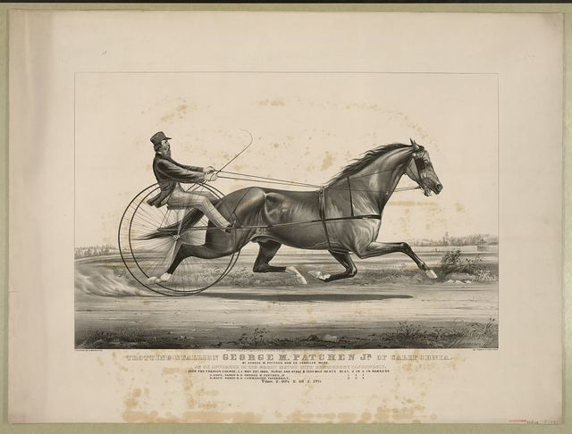 Trotting stallion George M. Patchen Jr. of California: by George M. Patchen, dam an abdallah mare