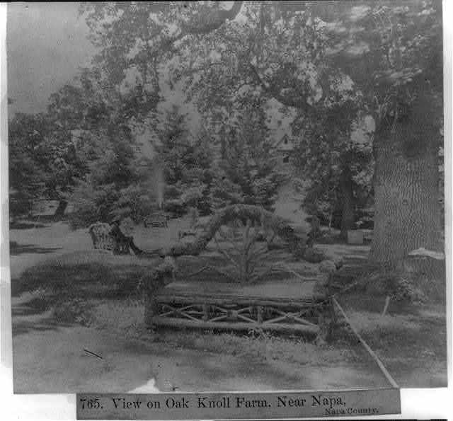 View on Oak Knoll Farm, near Napa, Napa County