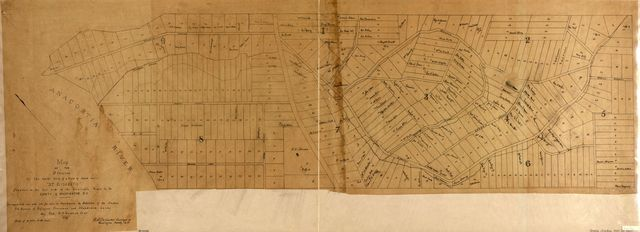 """Map of the division of the north half of a tract of land called """"St. Elisabeth,"""" situated on the east side of the Anacostia River in the county of Washington, D.C. : surveyed into one acre lots for sale to freedmen /"""