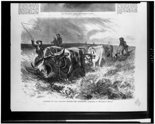 Plowing on the prairie beyond the Mississippi / sketched by Theodore R. Davis.