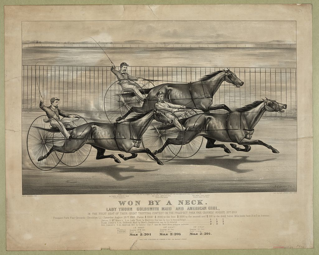 Won by a neck: Lady Thorn Goldsmith Maid and American Girl, in the first heat of their great trotting contest on the Prospect Park fair grounds August 28th 1869