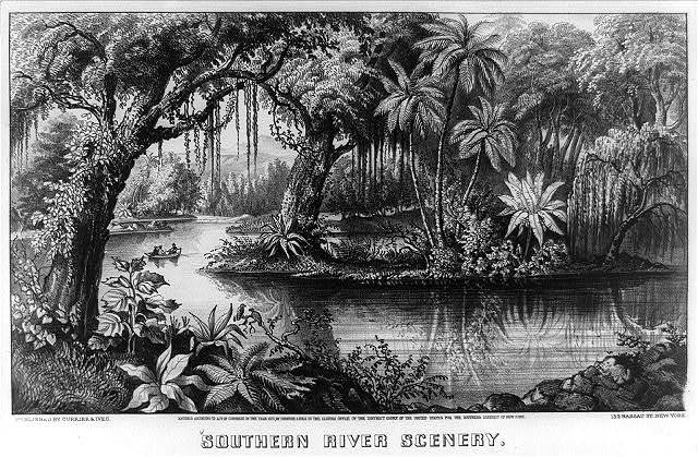 Southern river scenery