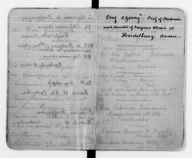 Clara Barton Papers: Diaries and Journals: 1871-1874; 1881, Mar. (includes copies of letters to Louise, Grand Duchess of Baden)