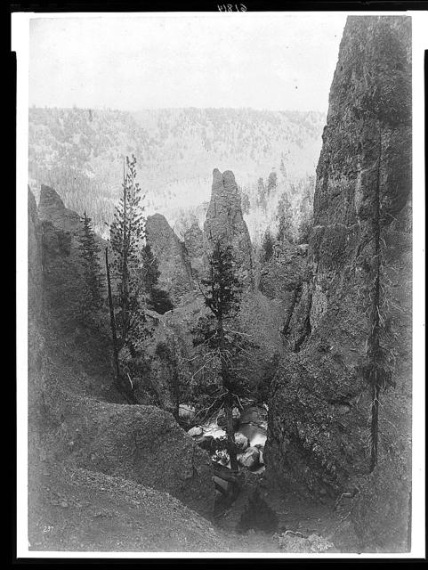 [Columns of volcanic breccia near Tower Falls, Yellowstone National Park, Wyoming]