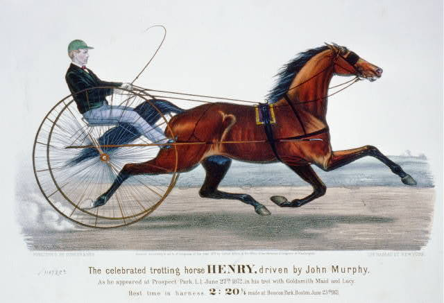 Celebrated trotting horse Henry, driven by John Murphy: As he appeared at Prospect Park, L.I. June 27th 1872, in his trot with Goldsmith Maid and Lucy
