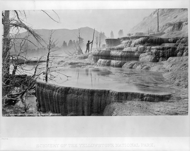 Scenery of the Yellowstone National Park. 217 Mammoth Hot Springs, lower basins, looking up