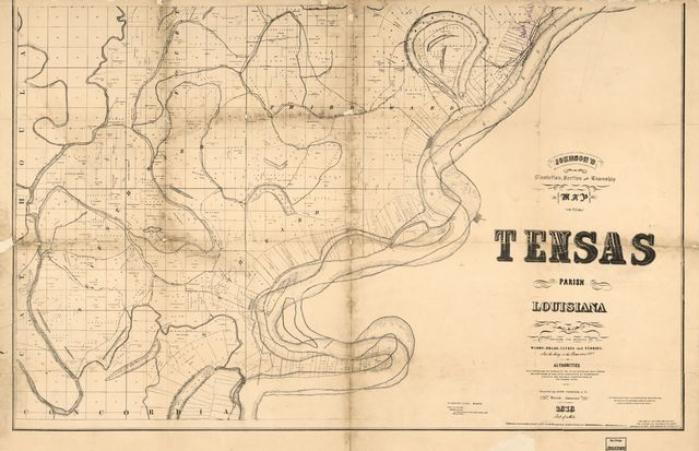 Johnson's plantation, section and township maof Tensas Parish, Louisiana : showing the several wards, roads, levees and ferries and the change in the river since 1828 /