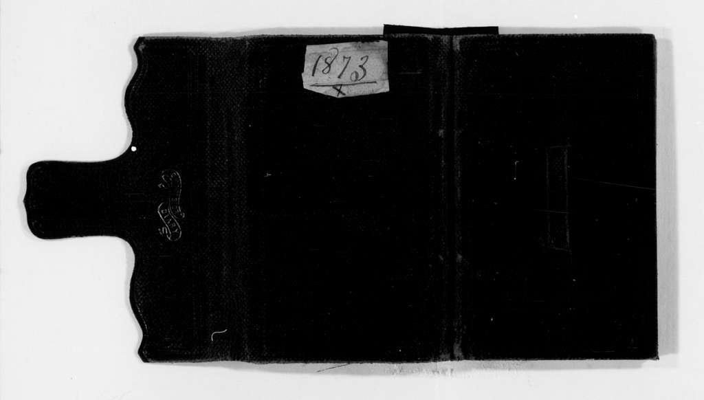 Susan B. Anthony Papers: Daybook and Diaries, 1856-1906; Diaries; 1873