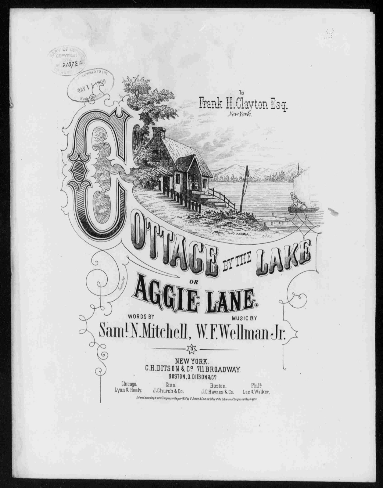 Cottage by the lake; or, Aggie Lane