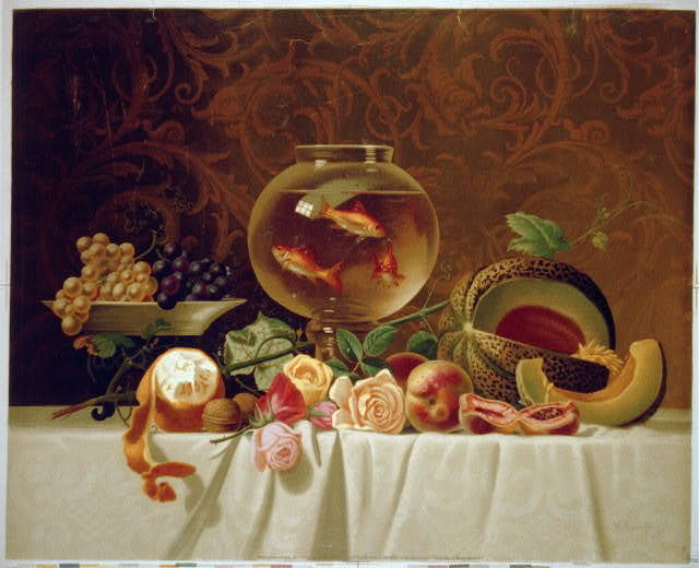 [Still life with fish]