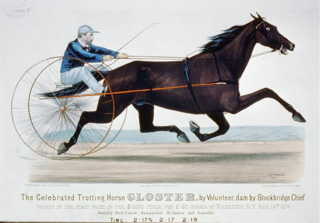 The celebrated trotting horse Gloster by volunteer, dam by Stockbridge Chief: Winner of the first prize in the $6,000 purse, for 2:20 horses, at Rochester, N.Y. Aug. 14th 1874