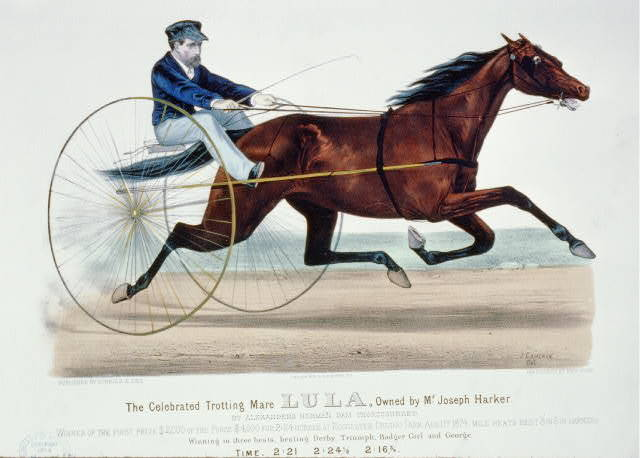The celebrated trotting mare Lula, owned by Mr. Joseph Harker: By Alexander's Norman, dam thoroughbred