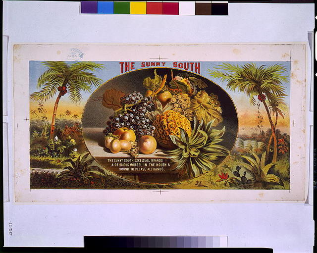 The sunny South / The Graphic Co. lith., N.Y.