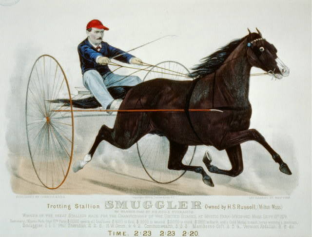 Trotting stallion Smuggler owned by H.S. Russell,(Milton, Mass.): by Blanco, dam by Herod's Tuckahoe
