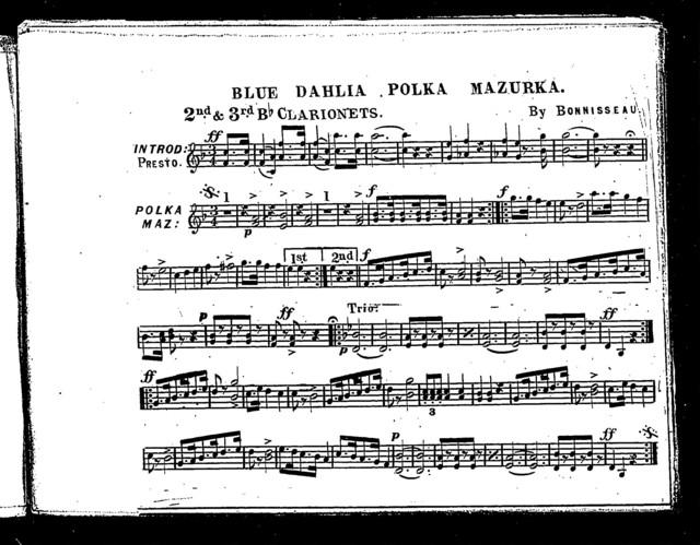 Blue Dahlia polka mazurka