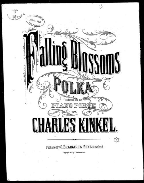 Falling blossoms polka