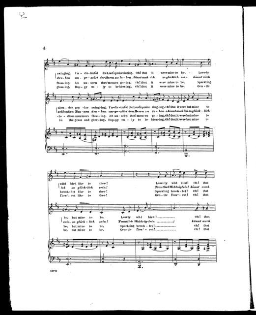 Forest joys - Waldfrieden