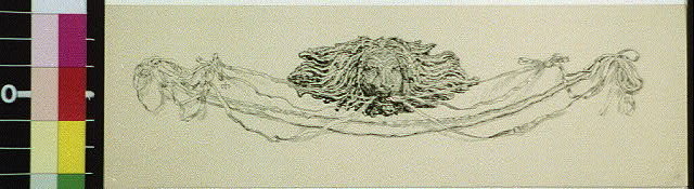[Lion head with decorative strands]