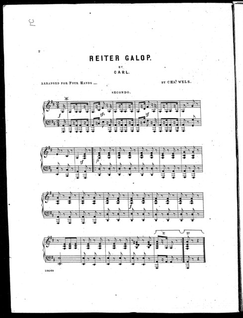 Reiter galop