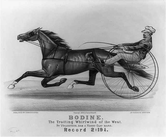 Bodine: The trotting whirlwind of the West