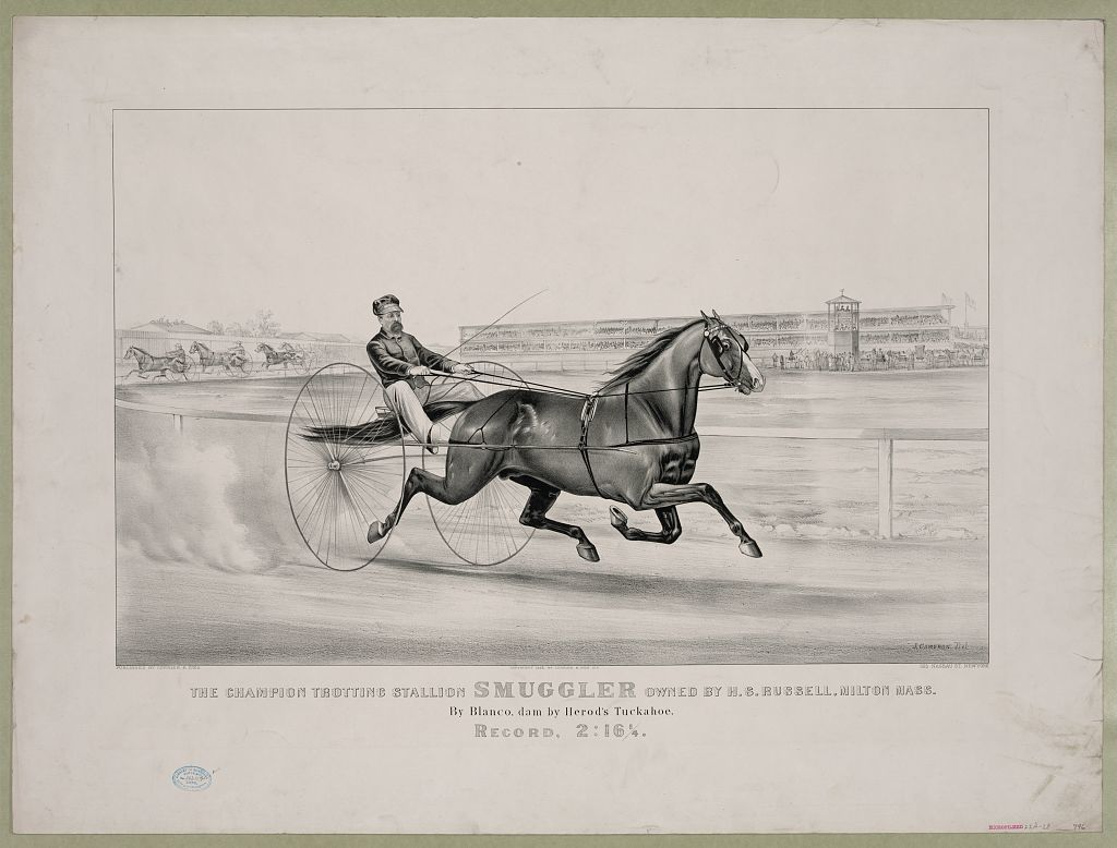 Champion trotting stallion Smuggler owned by H.S. Russell, Milton Mass.: By Blanco, dam by Herod's Tuckahoe