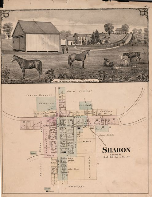 Illustrated atlas of Noble County, Ohio : published from actual surveys /