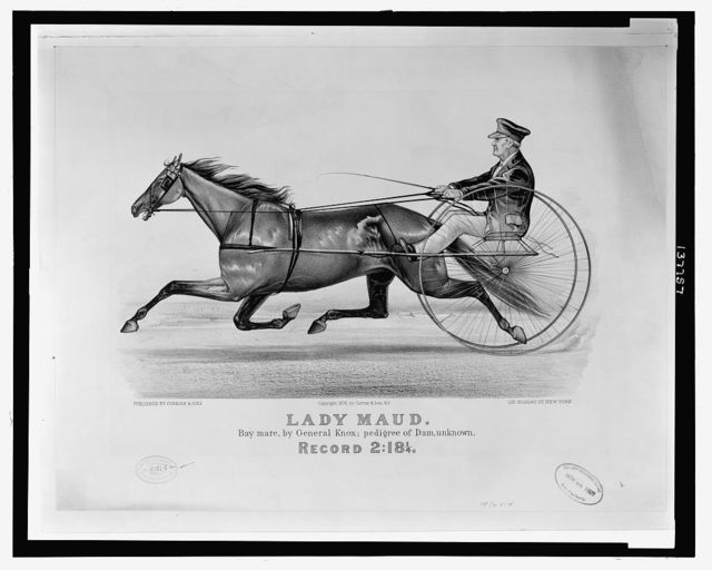 Lady Maud: bay mare, by General Knox; pedigree of dam, unknown