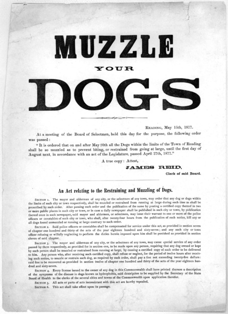 "Muzzle your dogs. Reading, May 15th, 1877. At a meeting of the Board of Selectmen, held this day for the purpose, the following order was passed: ""It is ordered that on and after May 20th all dogs within the limits of the Town of Reading shall b"