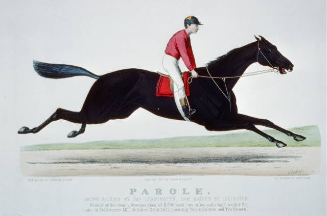 Parole: brown gelding by Imp. Leamington, dam Maiden by Lexington