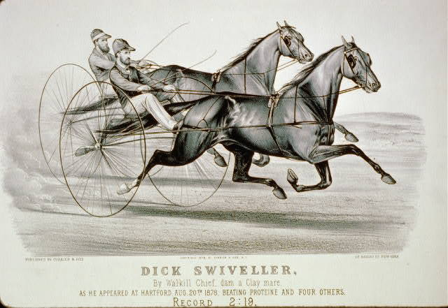 Dick Swiveller: By Walkill chief, dam a Clay Mare