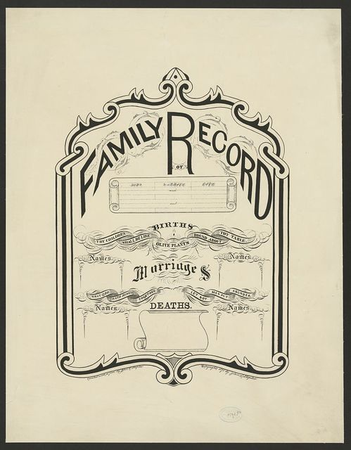 Family record / executed with a pen by John R. Staples.