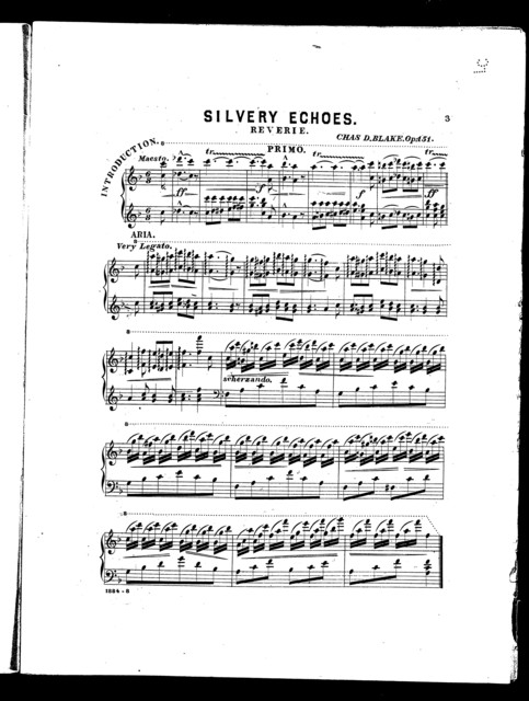 Silvery echoes