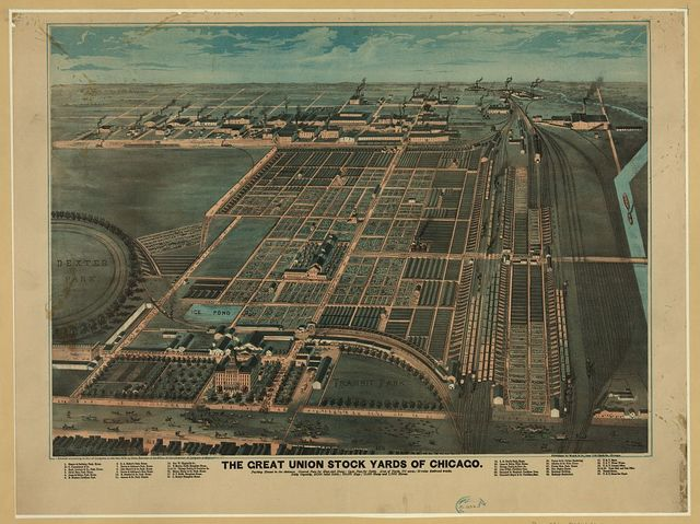 The Great Union Stock Yards of Chicago