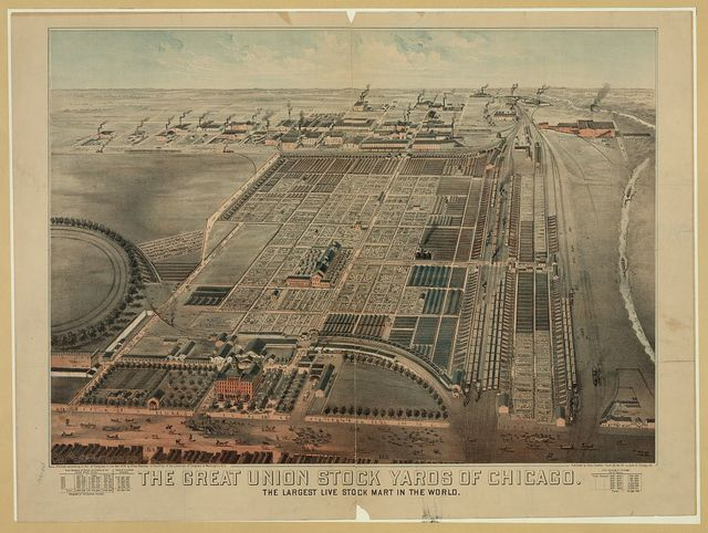 The Great Union Stock Yards of Chicago. The largest live stock mart in the world