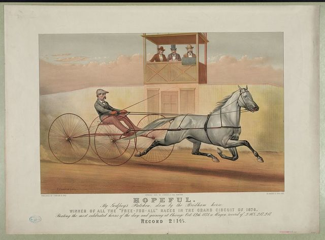 Hopeful: by Godfrey's Patchen, dam by the Bridham horse