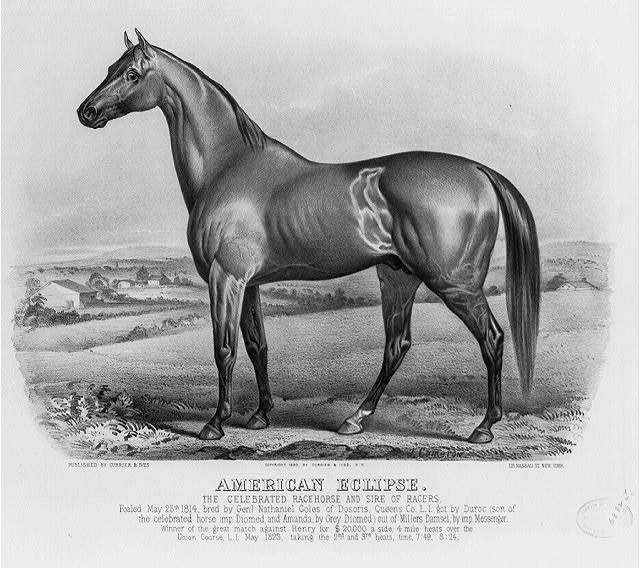 American eclipse: The celebrated racehorse and sire of racers