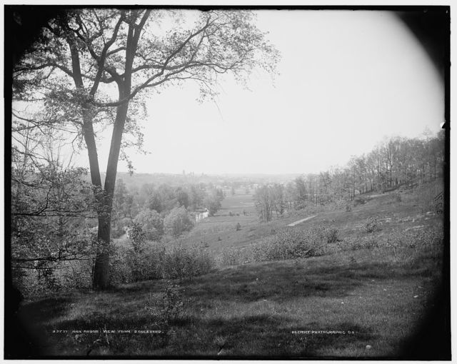 Ann Arbor, view from boulevard
