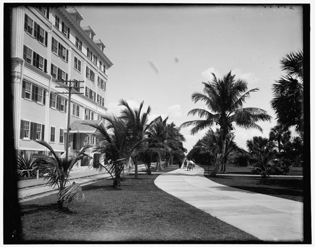 [Bicycle Ave., Palm Beach, Florida]