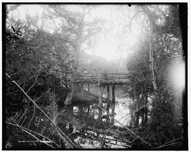 Bridge at Crucitas