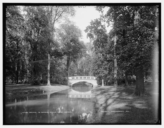 Bridge in woods, Belle Isle, Detroit