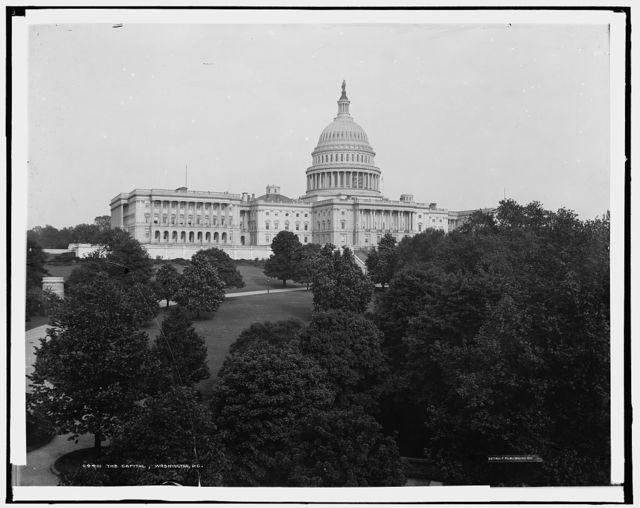 Capitol, Washington, D.C., The