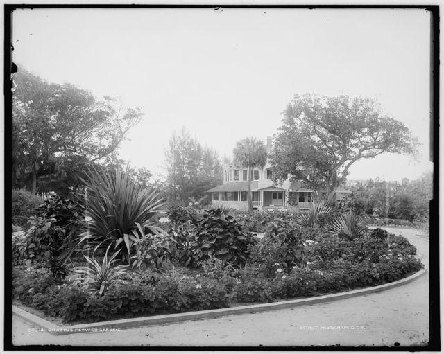 Cragin's flower garden