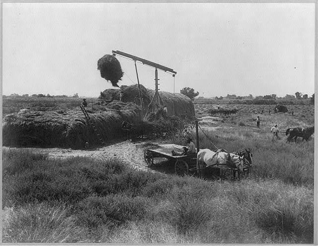 Derrick fork stacking hay, Kerr Ranch