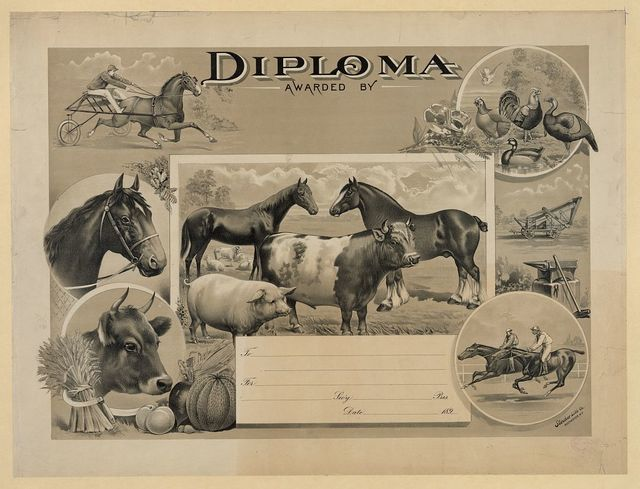 Diploma awarded by