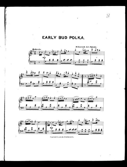 Early bud polka