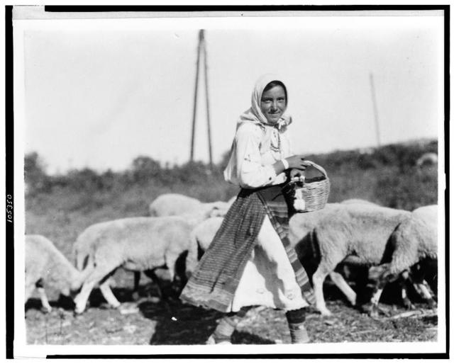 [Girl shepherdess with sheep, Bulgaria]