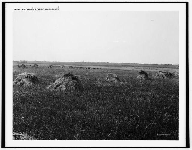 H.E. Garvin's farm, Tracey [sic], Minn.